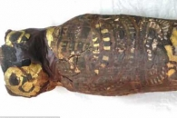 2100년 전 고대 이집트 '무뇌증 태아 미라' 발견 (연구)