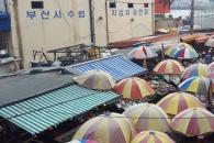 [윤기자의 콕 찍어주는 그곳] 남포동(南浦洞) 전성시대 - 부산 자갈치 시장
