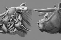 개 인듯 개 아닌…180년 전 멸종된 '소' 얼굴 복원해보니