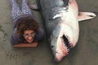 죽은 상어를 배경으로 촬영한 사진 논란…알고보니 과학용?