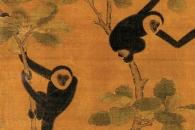 [와우! 과학] 2300년 전 진시황 할머니 무덤서 멸종 원숭이 발견