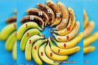 [알쏭달쏭+] 얼마나 익은 바나나가 가장 먹기 좋을까?