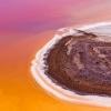 """호주 사막에 나타난 오아시스…""""평생 한 번 볼까 말까"""""""