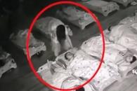 [여기는 중국] 자는 아이 얼굴을 발로 밟은 유치원 교사 충격