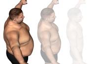 [와우! 과학] 인류는 언제부터 살이 찌기 시작했을까?