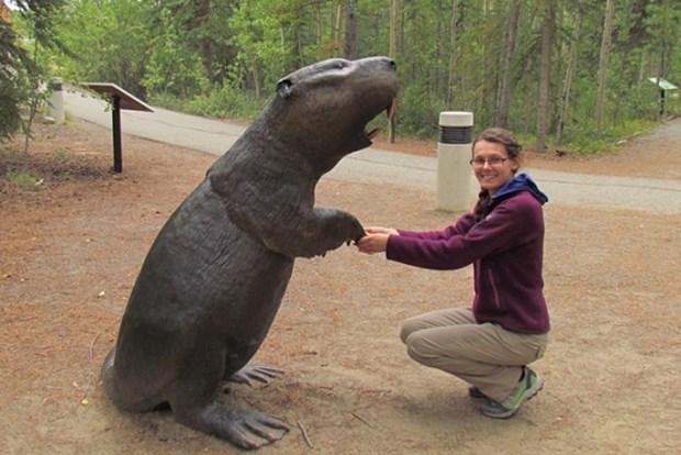 [와우! 과학] 곰만한 덩치가진 '자이언트 비버'는 왜 멸종됐을까?